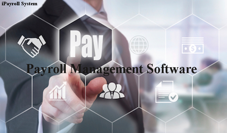 Customized Payroll Software's